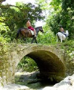 Jamaica, equestrian, horse riding, beach ride